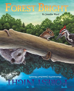 Cover for Forest Bright, Forest Night