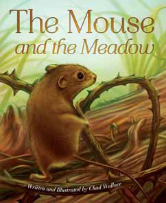 Cover for The Mouse and the Meadow