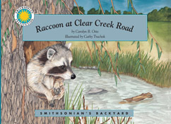 Cover for Raccoon at Clear Creek Road