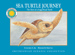 Cover for The Story of a Loggerhead Turtle