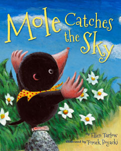 Cover for Mole Catches the Sky