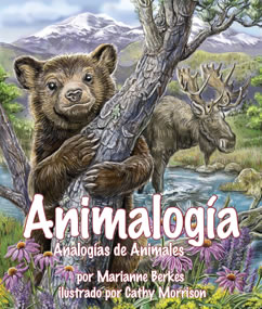 Cover for Animalogía: Analogías de Animales