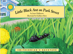 Cover for Little Black Ant on Park Street