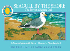 Cover for The Story of a Herring Gull