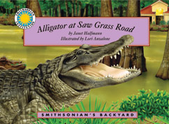 Cover for Alligator at Saw Grass Road