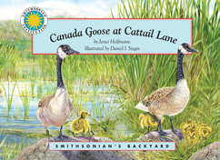 Cover for Canada Goose at Cattail Lane