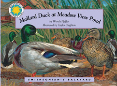 Cover for Mallard Duck at Meadow View Pond
