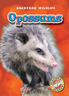 Cover for Opossums