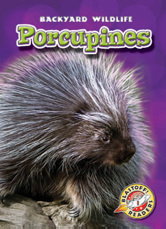 Cover for Porcupines