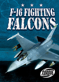 Cover for F-16 Fighting Falcons