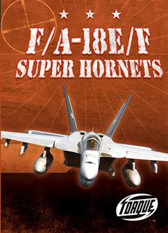 Cover for F/A-18E/F Super Hornets