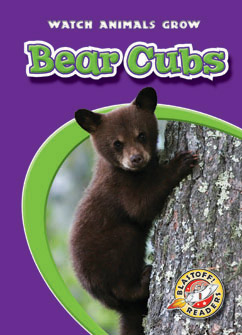 Cover for Bear Cubs