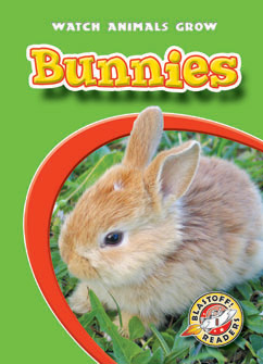 Cover for Bunnies