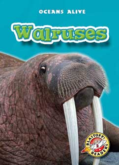 Cover for Walruses