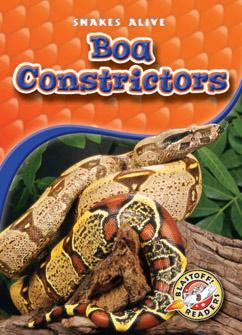 Cover for Boa Constrictors