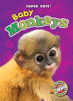 Cover for Baby Monkeys