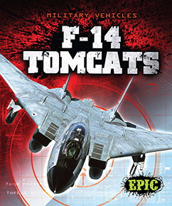 Cover for F-14 Tomcats