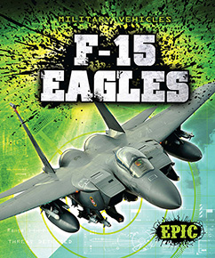 Cover for F-15 Eagles