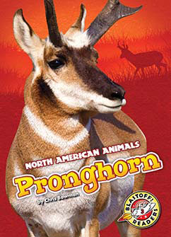 Cover for Pronghorn
