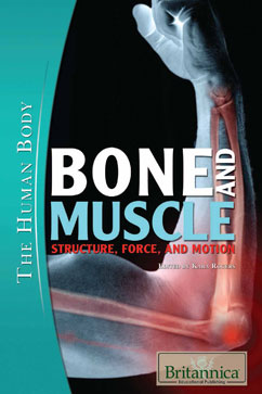 Cover for Bone and Muscle: Structure, Force, and Motion