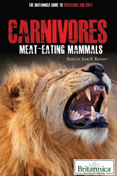 Cover for Carnivores