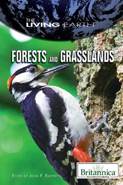 Cover for Forests and Grasslands