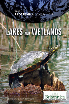 Cover for Lakes and Wetlands