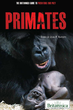 Cover for Primates
