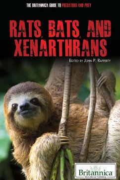 Cover for Rats, Bats, and Xenarthrans