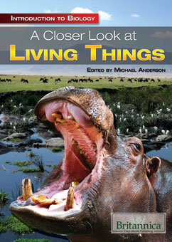 Cover for A Closer Look at Living Things