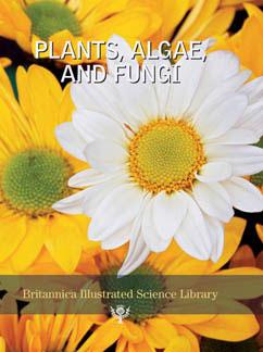 Cover for Plants, Algae, and Fungi