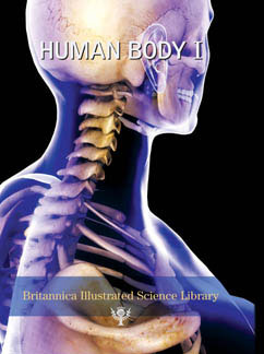Cover for Human Body I