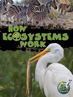 Cover for How Ecosystems Work