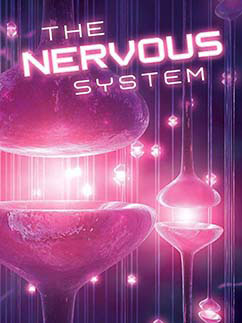 Cover for The Nervous System