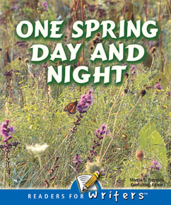 Cover for One Spring Day And Night