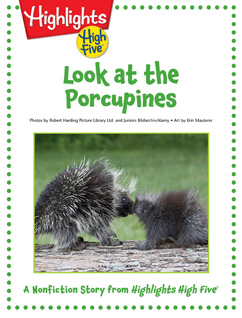 Cover for Look at the Porcupines