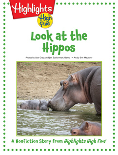Cover for Look at the Hippos