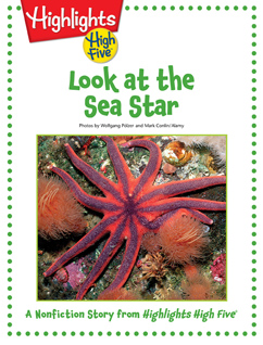 Cover for Look at the Sea Star