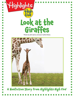 Cover for Look at the Giraffes