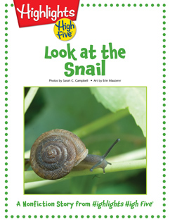 Cover for Look at the Snail