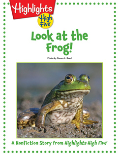 Cover for Look at the Frog!