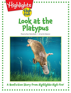 Cover for Look at the Platypus