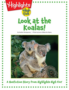 Cover for Look at the Koalas!