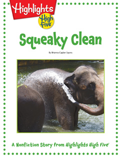 Cover for Squeaky Clean