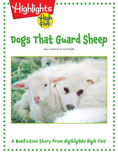 Cover for Dogs That Guard Sheep