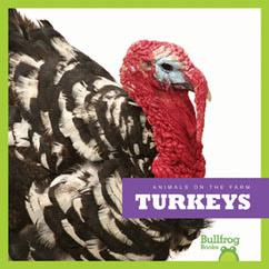 Cover for Turkeys