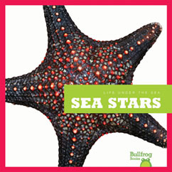 Cover for Sea Stars