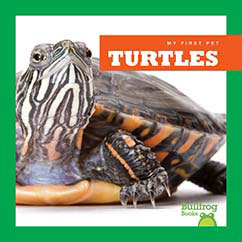 Cover for Turtles