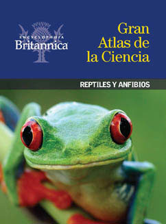 Cover for Reptiles y anfibios