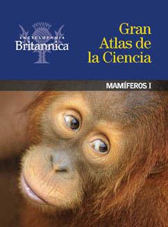 Cover for Mamíferos I